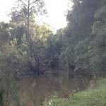 Kandanga Creek