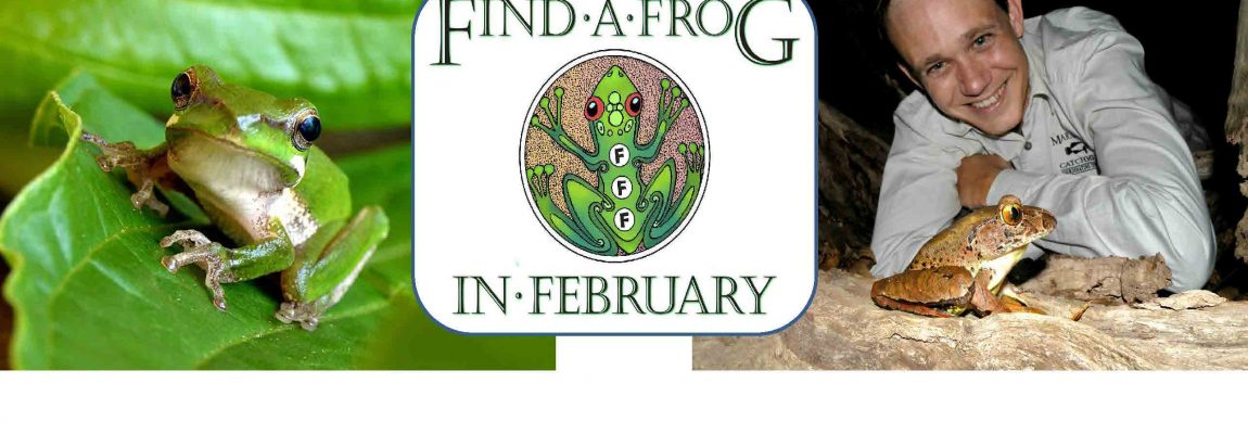 Get ready to Find a Frog in February!